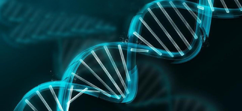 2020年厦门市第二批重大科技项目(生物医药与健康、社会科技领域)申报指南