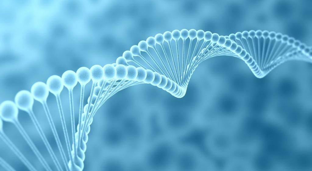 厦门生物医药产业园:入选第一批国家战略性新兴产业集群名单