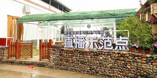 淘宝中国福建绿植花卉产业带直播大楼正式投用