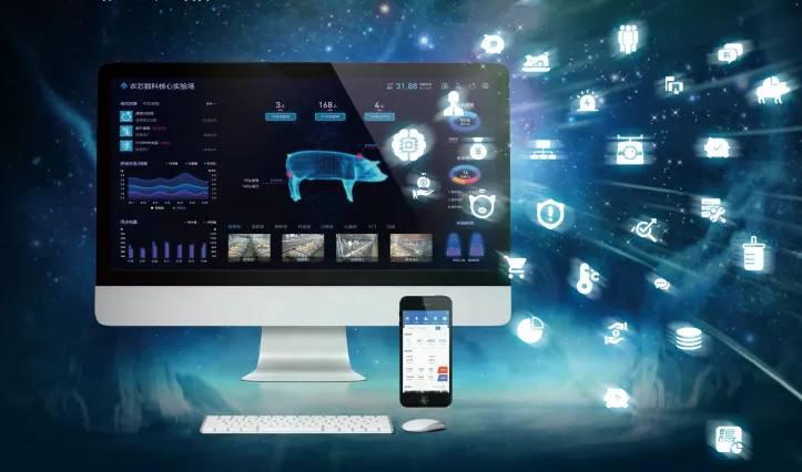 厦企将5G技术运用在智能化养猪上 实现人工智能化养殖