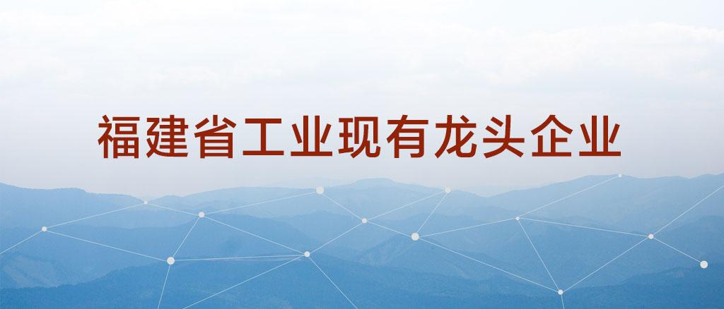 """22家企业上榜""""福建省工业现有龙头企业名单(第二批)"""""""